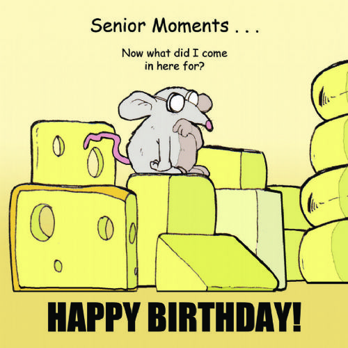 TW286 – Senior Moments Funny Happy Birthday Card